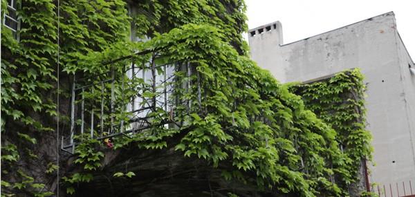 Mieszkania na strychu w Łodzi